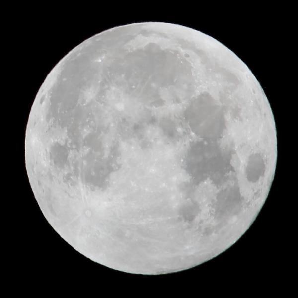 月_600